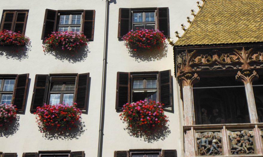 Close up of golden roof and flowers - Innsbruck, Austria