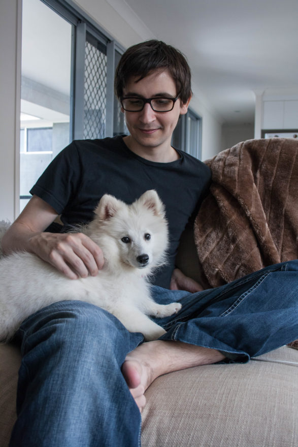 A year with Lucy, the Japanese Spitz - first day home