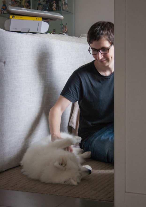 A year with Lucy, the Japanese Spitz - Belly rub time