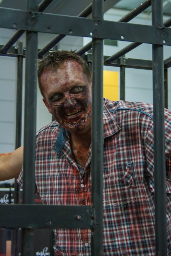 Oz Comic Con Brisbane 2015 - Zombies